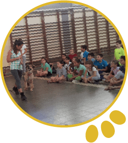 פעילות עם ילדים וכלב