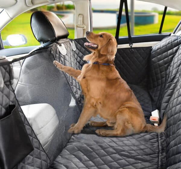 כיסוי רכב לכלב