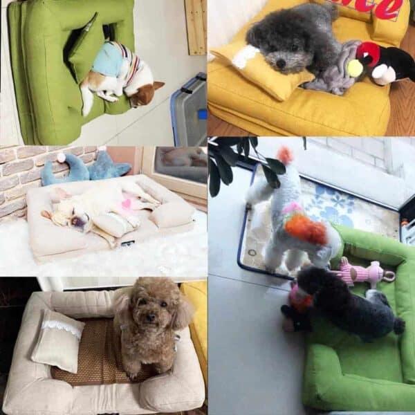 חיות מחמד כלב מיטת ספה אלגנטית לחיות מחמד כרית כלב חתול מלונה מחצלת נשלף גדול כלב מיטת טרקלין ספה לחיות מחמד מיטות עבור קטן בינוני כלבים